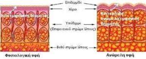 kuttaritida1